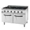 Gas 6 Burner Range With Cabinet (European burner) 2